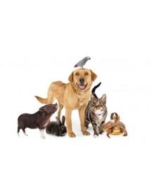 Marcas Mascotas